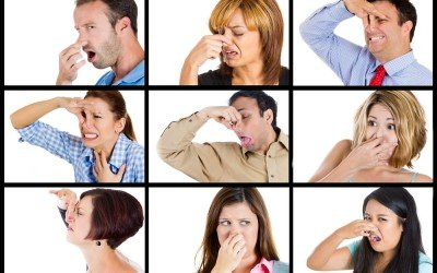 Your bad breath could mean you have gum disease!